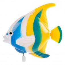 Заводная игрушка для ванны УМка Рыбка 1102D005-Y2-D1